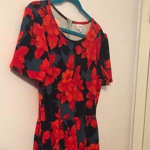 Lularoe American print Amelia 2X dress, pockets!!